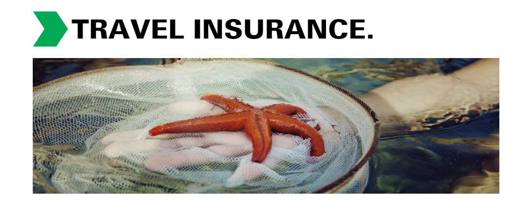 travel-insurance legalandgeneral